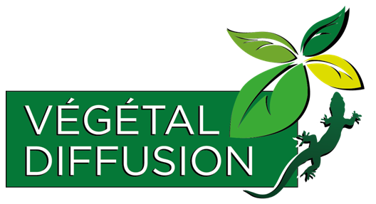 Végétal Diffusion