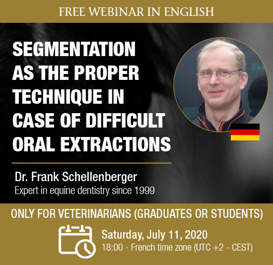 Free Webinar in English: Segmentation as the proper technique in case of difficult oral extractions
